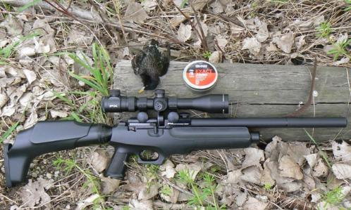 The FX Verminator MK II Extreme | American Airgun Hunter